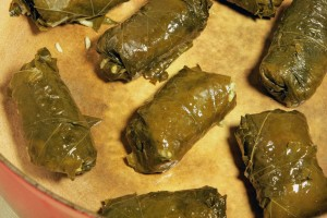 Vegan Recipe - Grape Leaves