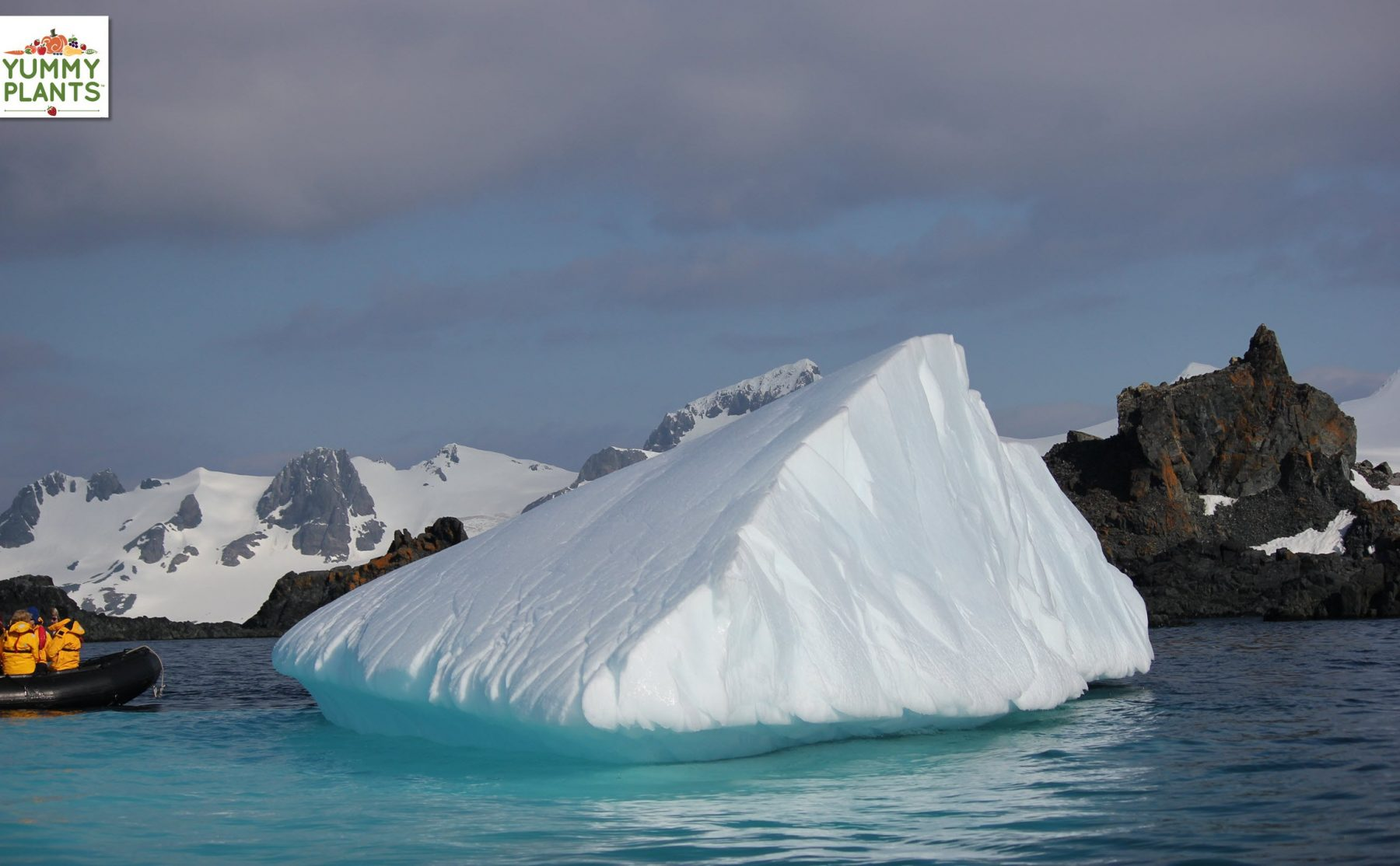 Travel to Antarctica, the White Continent!