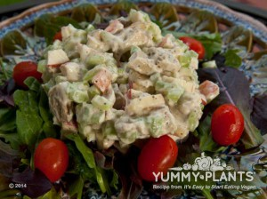 Vegan Recipe - No Chicken Salad