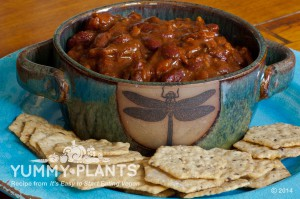 Vegan Recipe - Chili