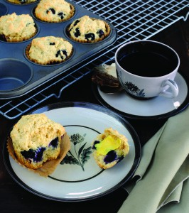 Vegan Recipe - Berry Muffins
